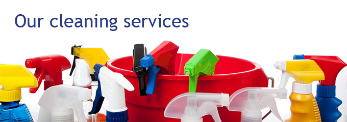 Lady Cleaning Services Sha excelsiororg